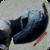 :iconpiperonni-cosplay: