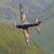 :iconpjones747-aircraft: