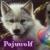 :iconpojuwolfe: