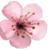 :iconpop-0f-color: