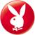 :iconposh-paper-rabbit: