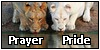 :iconprayer-pride: