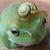 :iconpretzel-frog:
