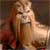 :iconprince-thrakhath: