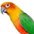 :iconprofessionalparrot: