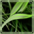:iconproject-green-leaf: