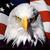:iconproudamerican1911: