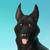 :iconpuppydog119: