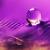 :iconPurple20: