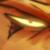 :iconpyro-archer: