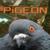 :iconrabidpigeon:
