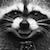 deviantart helpplz emoticon racconsmileplz