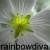 :iconrainbowdiva: