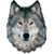 :iconramwolff: