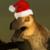 :iconraptorwings: