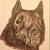 :iconravenscarwolf: