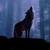 :iconraylesswolf: