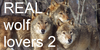 :iconreal-wolf-lovers2: