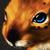 :iconred-bunn3h: