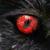 :iconred-eyed-ratman: