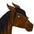 :iconrelient-equestrian43: