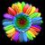 :iconrising-firebird: