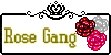 :iconrose-gang: