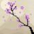:icons--art: