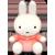 :icons-c-o-r-p: