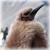 :icons-penguin: