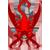 :iconsaber-scorpion: