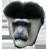 :iconsadmonkeyplz: