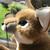 :iconsage-songdog: