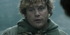 :iconsamwise-gamgee-fans: