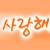 :iconsanisapa: