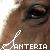 :iconsanteria-manip: