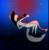 :iconsapphire-w0lf: