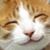:iconsassy10124: