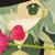 :iconsatonaka-chan:
