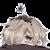 :iconsatsuki98: