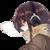 :iconsayane-chan: