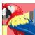 :iconscarlet-macaw: