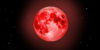 :iconscarlet-moon-works: