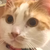 :iconscarlet-theehedgehog: