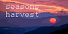 :iconseasons--harvest: