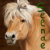 :iconseenae: