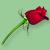 :iconserafina-rose: