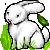 :iconsf-adopts: