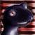 :iconshadow-gecko: