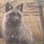 :iconshadowfox1119: